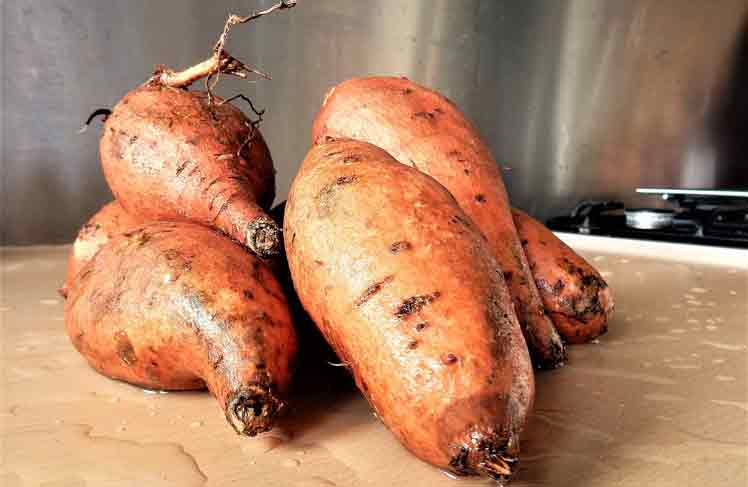 Zoete aardappel oven